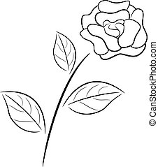 Abstract black and white rose in outline drawing style.