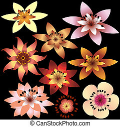 abstract, bloemen, verzameling, (vector)