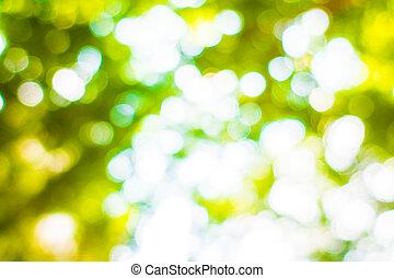 Abstract blur green bokeh light