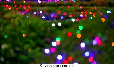 abstract blur rainbow color light decoration on tree in the night garden