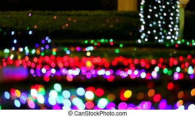 abstract blur rainbow color light on plant in night garden