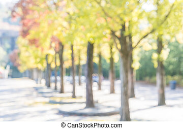 Abstract blurred Autumn Trees background