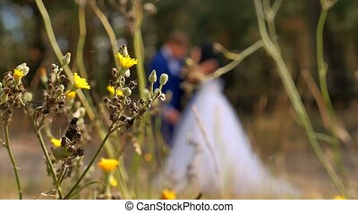 Abstract blurred people Portraits of the newlyweds. A wedding couple is in the background. wedding nature grass