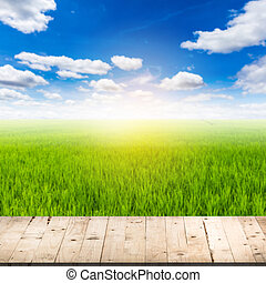 abstract blurred rice field and wood table with clouds blue sky