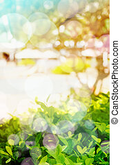 Abstract Blurred Summer Background