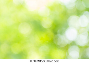 Abstract bokeh and blurred green nature background