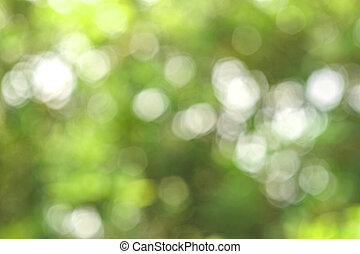 Abstract bokeh green