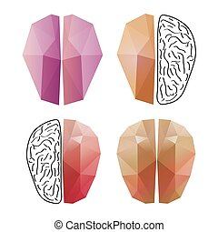 Abstract brain isolated on a white backgrounds