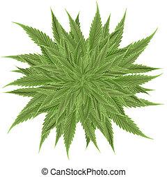cannabis - abstract cannabis background 3d