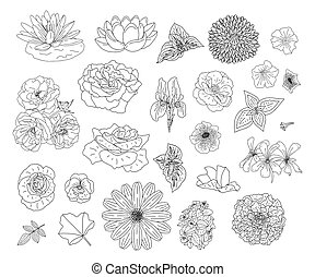 Abstract collection with flowers in doodle style for...