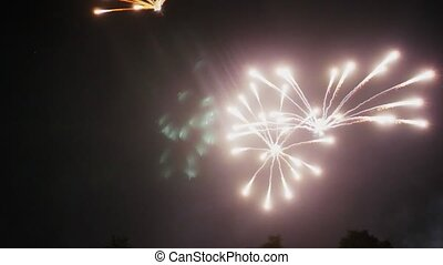 Abstract colored fireworks in the night sky. background copy...