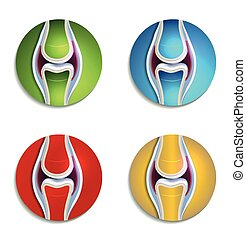Abstract colorful joint anatomy icons set
