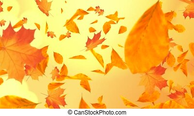 Abstract Colorful maple autumn leaves leaves autumnal Loop background Alpha with sun flares. Romantic Beautiful nature scene animation. season, spinning, thanksgiving, Wedding, valentines day.