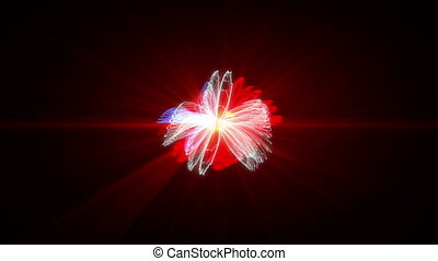 Abstract colorful petal light strokes
