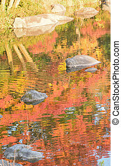 Abstract colorful reflection of vibrant Japanese autumn maple leaves on pond waters