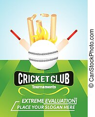 abstract cricket background with ball vector illustration