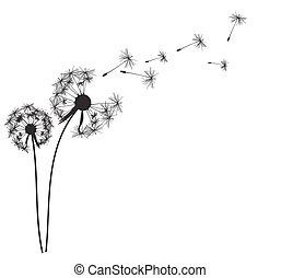 Abstract Dandelion Background Vector Illustration EPS10