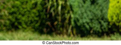 Abstract dark green spring panorama.