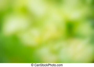 Abstract defocused green blurred background