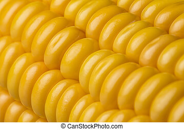 Abstract detail of corn