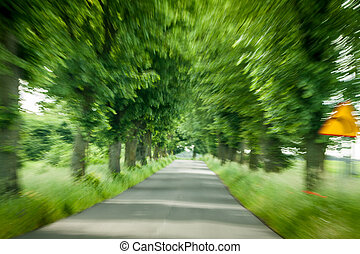Abstract driving on forest road