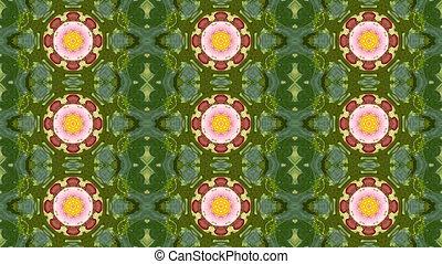 kaleidoscope flower pattern background - Abstract dynamic...
