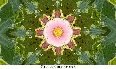 geometric kaleidoscope flower pattern background - Abstract...