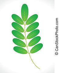 abstract eco green leaf icon vector