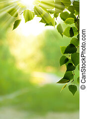 Abstract environmental backgrounds for your design
