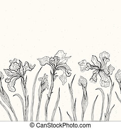 Abstract floral background. Iris. - Hand drawn Iris. White...
