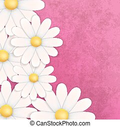 abstract floral background with chamomiles