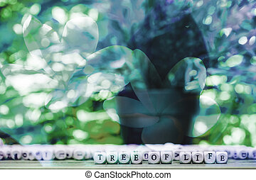 Abstract flower background. flowers made with color filters