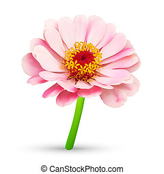 Abstract flower blossom illustration - Abstract flower...