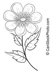 Abstract flower, contour - Abstract symbolical flower, ...