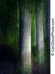 abstract forest - Abstract picture of tree trunks in forest ...