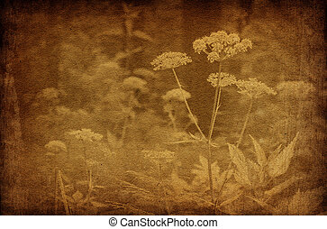 Abstract forest flowers vintage backgrounds. Grungy, sepia...