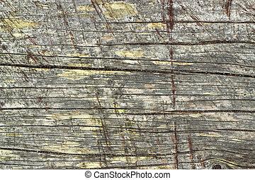 abstract., gammal, ridit ut, struktur, ved, naturlig