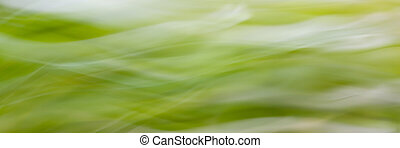 Abstract green blured background