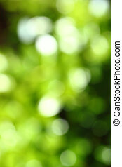 Abstract green blurred background