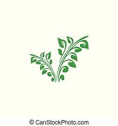 abstract green plant symbol logo vector