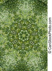 Abstract greenery background, green leaves with kaleidoscope effect