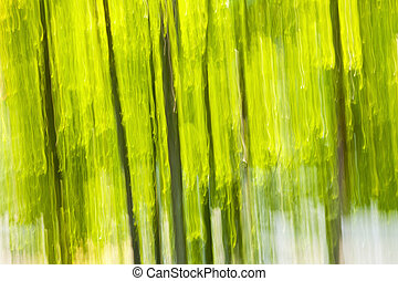 abstract, groen bos, achtergrond