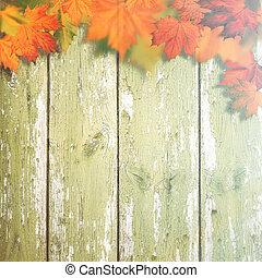 abstract, herfstachtig, achtergronden, met, de bladeren van de esdoorn, op, oud, houten bureau