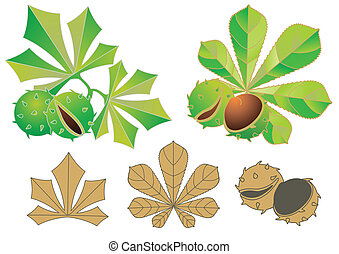 abstract leaves and garden-stuffs of chestnut
