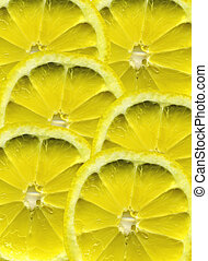 lemon - abstract lemon patern