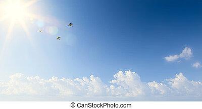 abstract, lente, morgen, landscape, met, vliegende vogels, in, de, hemel