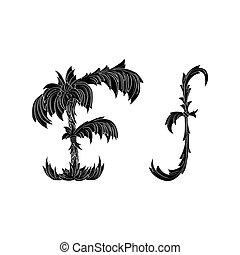 Bf B F Letter Alphabet Logo Black White Icon Design Bf B F Letter