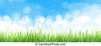 abstract, lucht achtergrond, gras veld, breed, zomer