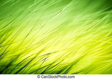 Abstract macro of fur in green tones. Shallow depth of field, artistic colors, decorative look.
