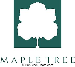 abstract maple tree vector design template
